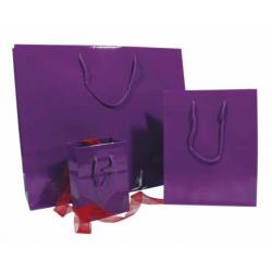 Sacs violets pelliculés brillant